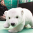 可愛的BB北極熊 (Cute baby polar bear)